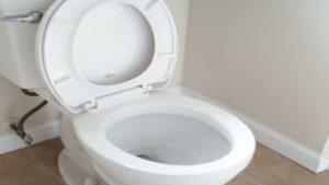 plumbers in memphis